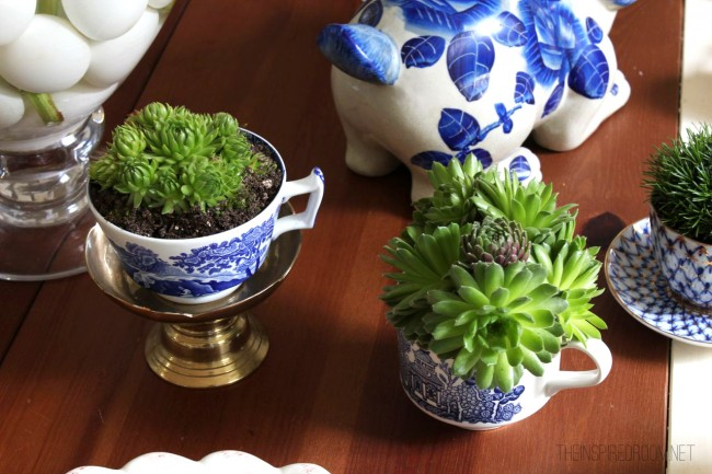 kitchen greenhouse window how to adjust cupboard hinges teacup gardens {5 minute miniature container garden} - the ...