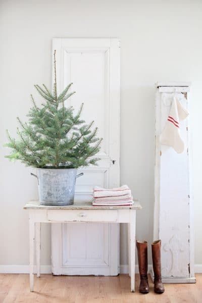 small-christmas-tree-in-a-zinc-bucket