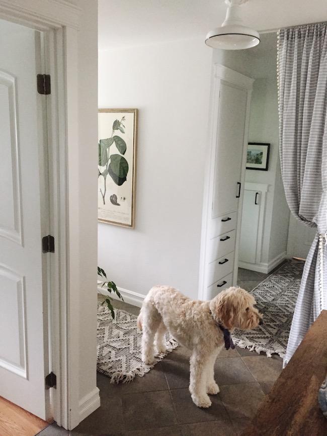 curtains on doorways creative
