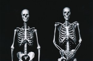 Exhibit-389-Graphic-Skeletons-1024x680