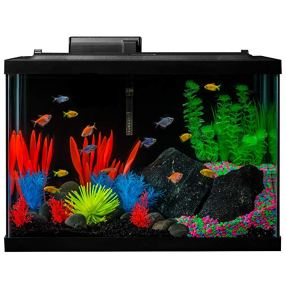 GloFish Fish Tank Kit, Includes LED Lighting and Decor