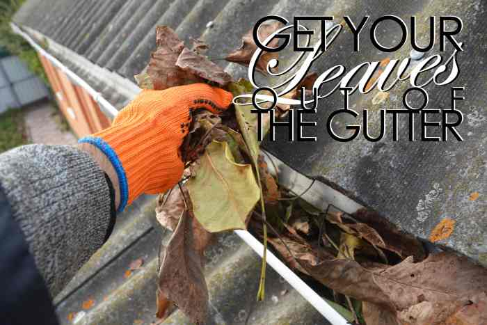 get your leaves out of the gutter-min