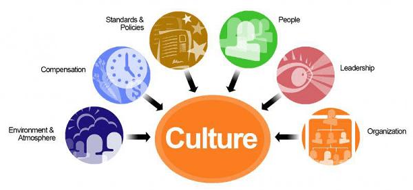 organizational_culture.jpg