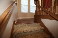 Fun Carpet on Stairs | The Interior Connection