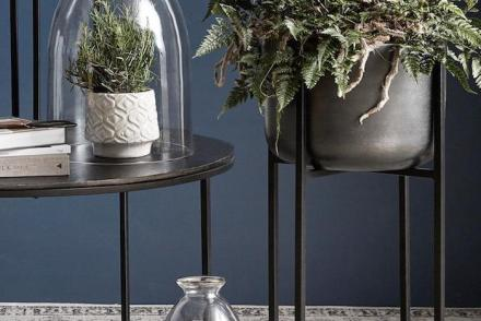 11 Ways To Elevate Your Houseplants
