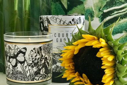 Decorative Fragrance For Your Home - Chase And Wonder
