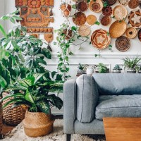 The Botanical Modern Boho Home of Judy Lynch