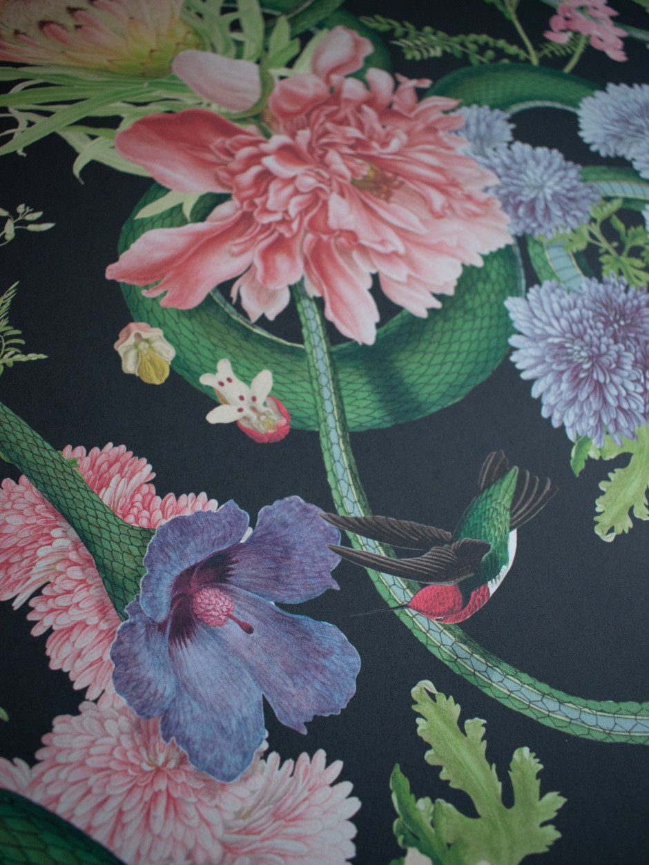 Divine Savages Collaboration with the Natural History Museum Forbidden Bloom wallpaper
