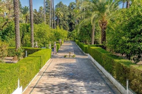 Real Alcazar Garden, Seville