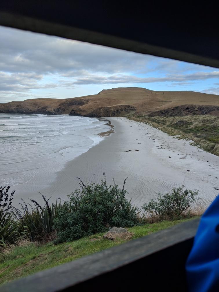 Dunedin08