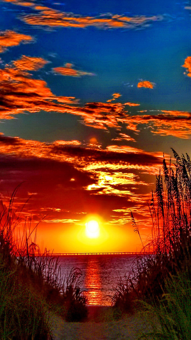 Awesome Colorful Sunset The Iphone Wallpapers