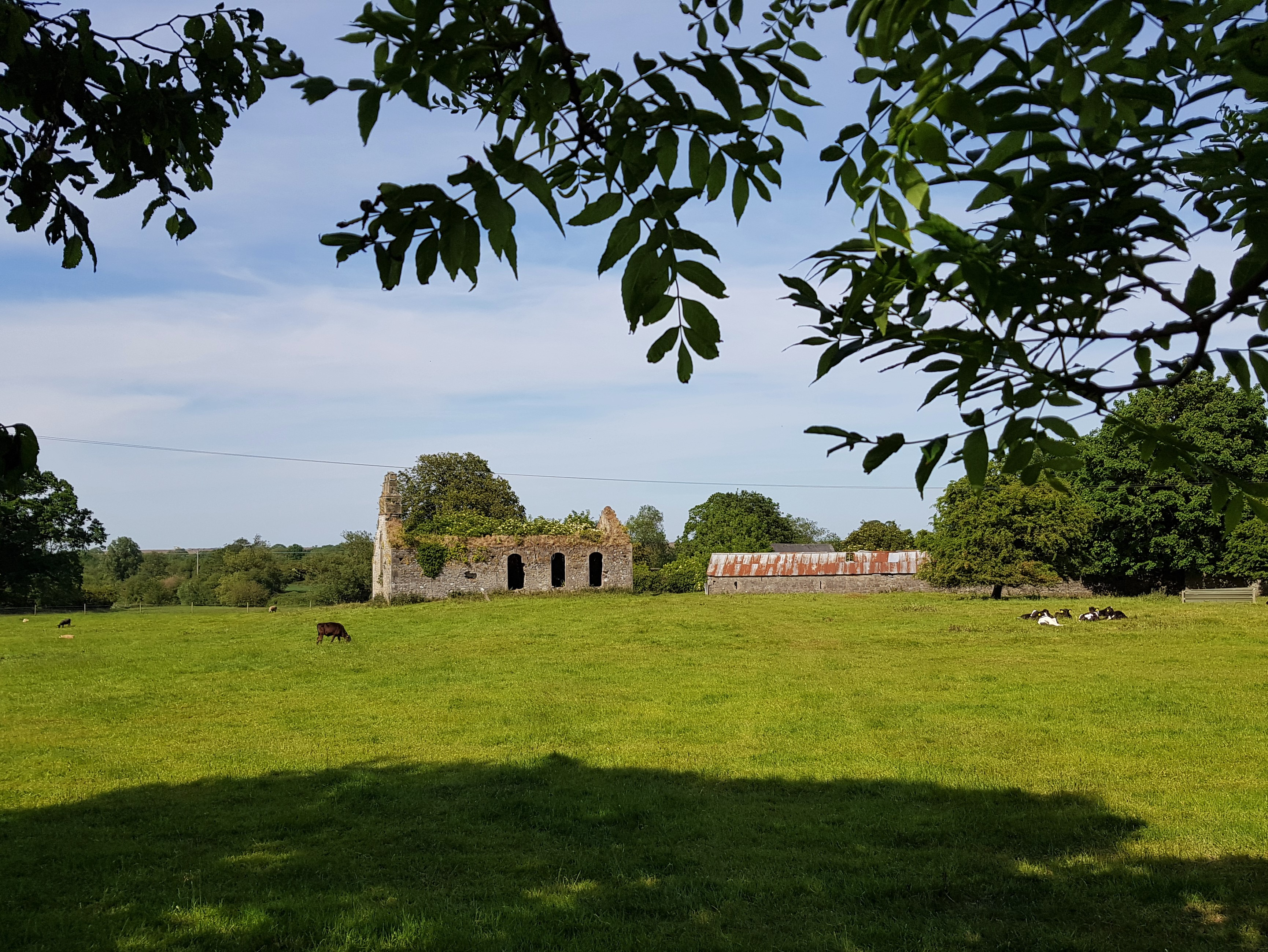Dundalk Ireland to Kildare - Rome2Rio