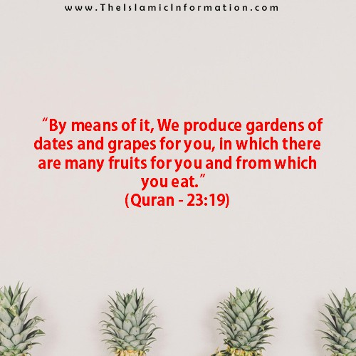 quran about grapes
