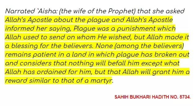 SAHIH BUKHARI HADITH NO 5734