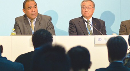 Call to separate disaster risk reduction from disaster management