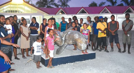 Dugong mother and calf unveiled