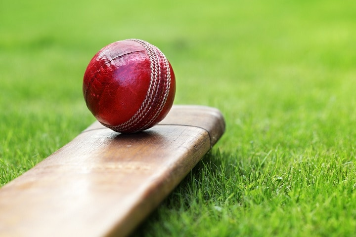 Cricket-bat-and-ball-picture