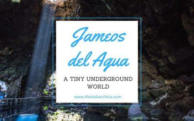 Jameos del Agua: un piccolo mondo sotterraneo.