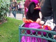 A glimpse of Minnie