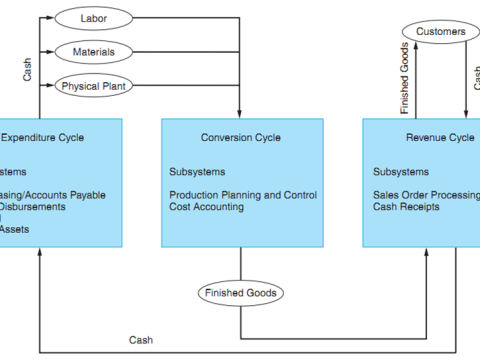 ,transaction processing system Diagram in AIS