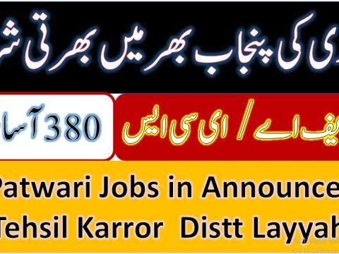 Patwari-jobs-in-Kahror-disst-layyah