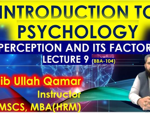Factors of Perception |BBA-104 Introduction to Psychology in urdu hindi - Lecture-9 | Chapter 4