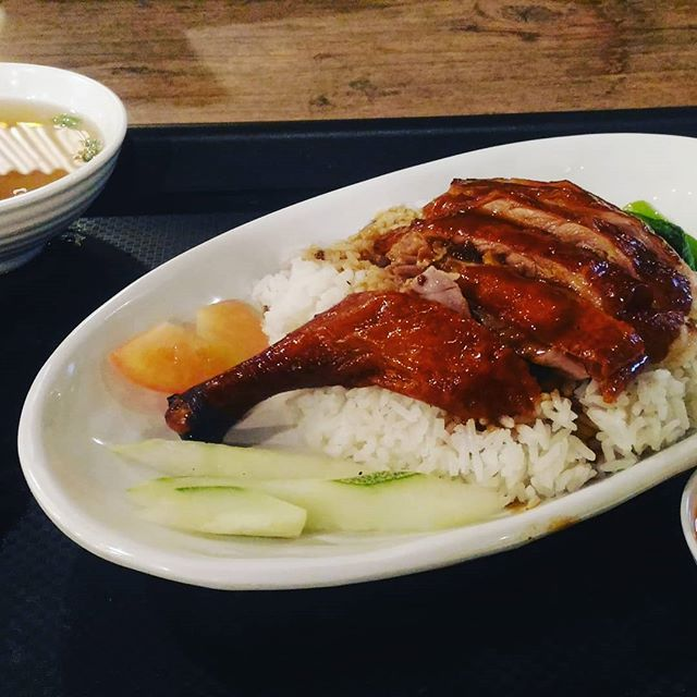 Rice and pork ribs
