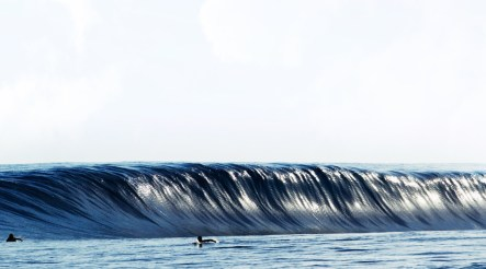 wave35