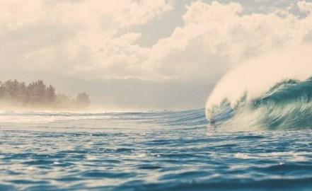 wave41