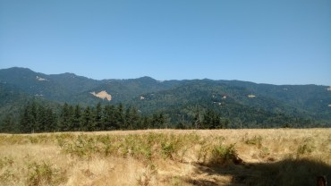 A view of the mountains behind Bob's property.