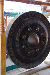 IMGP3567