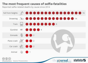 wsj_daily-shot-selfie-fatalities_12-29-16