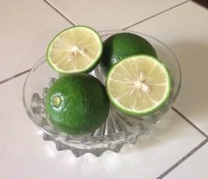 Harvested lemons 8.16