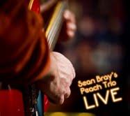 Sean Bray's Peach Trio Live
