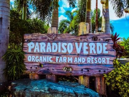Paradiso Verde - http://thejerny.com
