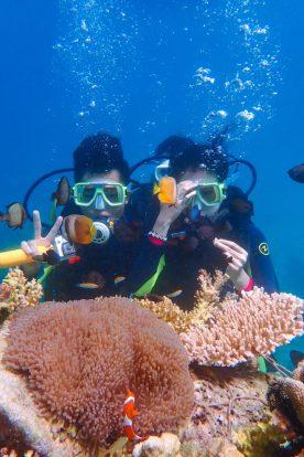 Discover Scuba Diving - http://thejerny.com