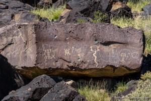 Petroglyphs, Rinconada Canyon Trail