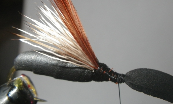 fly tying black foam ant saddle hackle neck