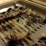 4 Tips to make your flies last longer
