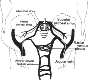 Usefulness of inferior petrosal sinus venous endocrine