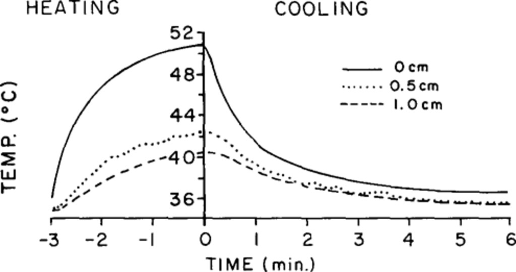 Cerebral blood flow and the thermal properties of the