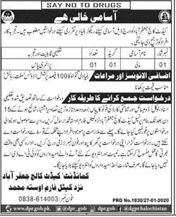 Cadet College Jobs 2020