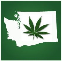 Washington Lawmakers Pass Legislation to Legalize Personal Marijuana Cultivation