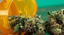 medical-marijuana-630