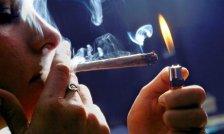 Washington State University Seeking People to Smoke Marijuana for $30 an Hour for New Study