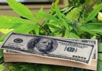 cannabismoney