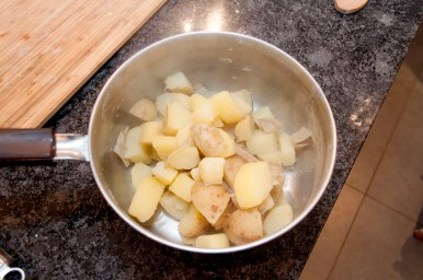 mashed potatoes_028