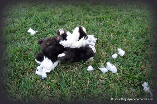 Tess's stuffed animal bear gutted and murdered by her