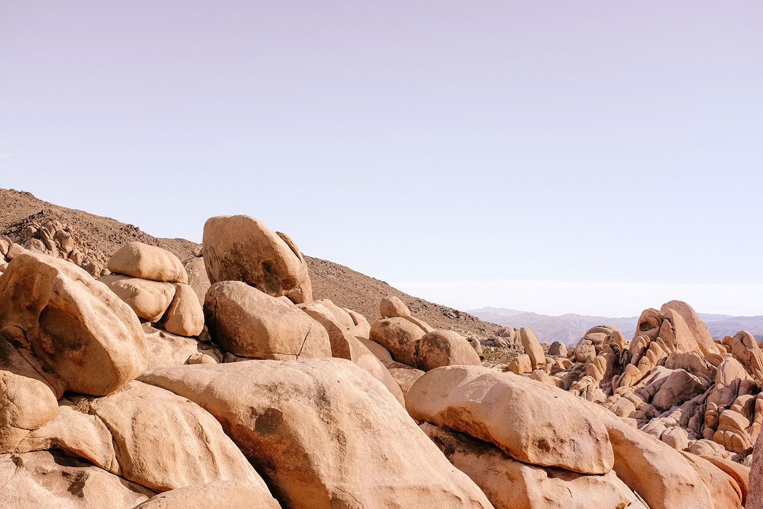 View at Arch Rock Trail in Joshua Tree