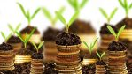 Nigeria's Foreign Direct Investment: Advancing Steadily Despite Missed Opportunities